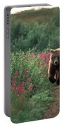 Grizzly Bear Portable Battery Charger by Ron Sanford