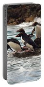Macaroni Penguin Portable Battery Charger