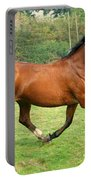 The Bay Horse Portable Battery Charger