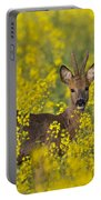 110714p138 Portable Battery Charger