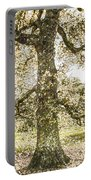 Greenwich Park London Art Portable Battery Charger