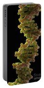 Human Dna Portable Battery Charger