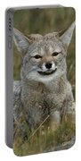 Patagonia Grey Fox Portable Battery Charger