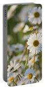 130215p282 Portable Battery Charger