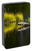 131005b-029 Forest Pond 2 Portable Battery Charger