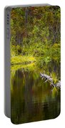 131005b-052 Forest Marsh 2 Portable Battery Charger
