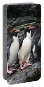 Macaroni Penguin Portable Battery Charger