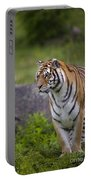 Siberian Tiger, China Portable Battery Charger