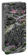 Yachats Oregon Portable Battery Charger