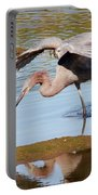 Birds Of The World Portable Battery Charger