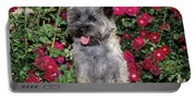 1990s Cairn Terrier Dog Standing Portable Battery Charger