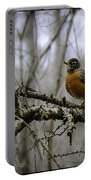 1st Robin Of Spring Portable Battery Charger