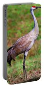 Adult Sandhill Crane Portable Battery Charger
