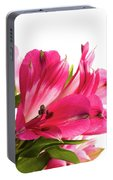 Alstroemeria Flowers Against White Portable Battery Charger