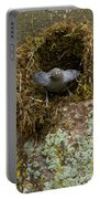 American Dipper And Nest   #1538 Portable Battery Charger