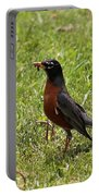 American Robin Gathering Worms Portable Battery Charger