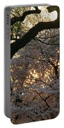 Angry Trees At Sunset Portable Battery Charger