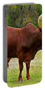 Ankole-watusi Cattle Portable Battery Charger