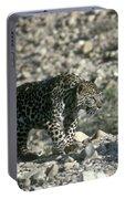Arabian Leopard Panthera Pardus 1 Portable Battery Charger