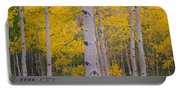 Aspen Trees In A Forest, Telluride, San Portable Battery Charger