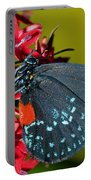 Atala Butterfly Portable Battery Charger