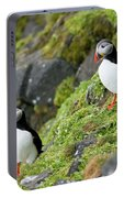 Atlantic Puffin, Fratercula Arctica Portable Battery Charger