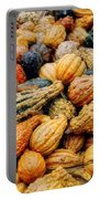 Autumn Gourds Portable Battery Charger by Joann Vitali