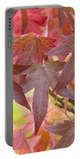 Autumnal Liquidambar Leaves Portable Battery Charger