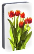 Backlit Tulip Flowers Against White Portable Battery Charger