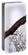 Bald Eagle Soaring Portable Battery Charger