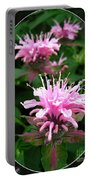 Bee Balm Named Panorama Pink Portable Battery Charger