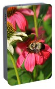 Bee Nice Portable Battery Charger