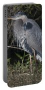 Birds Of The Lowcountry Portable Battery Charger