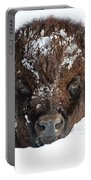 Bison In Snow Portable Battery Charger