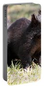 Black Squirrel Portable Battery Charger