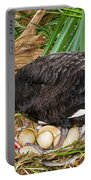 Black Swan At Nest Portable Battery Charger