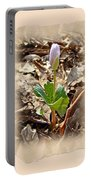 Bloodroot Wildflower - Sanguinaria Canadensis Portable Battery Charger