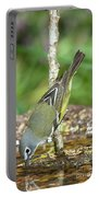 Blue-headed Vireo Portable Battery Charger