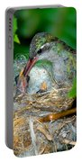 Broad-billed Hummingbird And Young Portable Battery Charger
