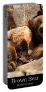 Brown Bear Portable Battery Charger by Chris Flees