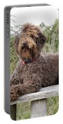 Brown Labradoodle Portable Battery Charger