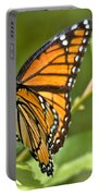 Busy Butterfly Portable Battery Charger