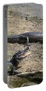 Caiman Portable Battery Charger
