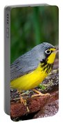 Canada Warbler Portable Battery Charger