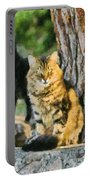 Cats In Hydra Island Portable Battery Charger