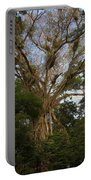 Cathedral Fig Tree Portable Battery Charger