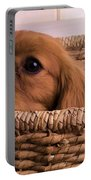 Cavalier King Charles Spaniel Puppy In Basket Portable Battery Charger