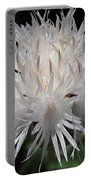 Centaurea Named The Bride Portable Battery Charger