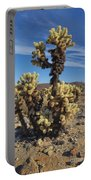 Cholla Cactus Portable Battery Charger