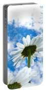 Close-up Shot Of White Daisy Flowers From Below Portable Battery Charger